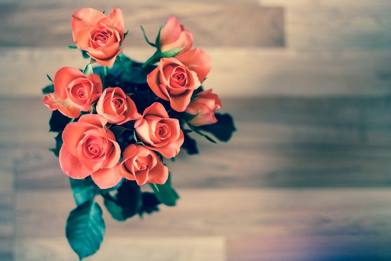 Primo anniversario di matrimonio idee regalo per lei il for Idee regalo collega di lavoro